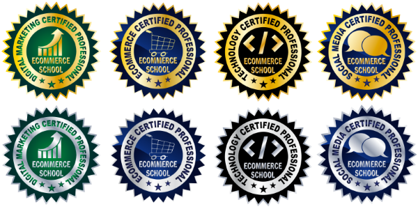 Ecommerce Course: Ecommerce Certified Professional